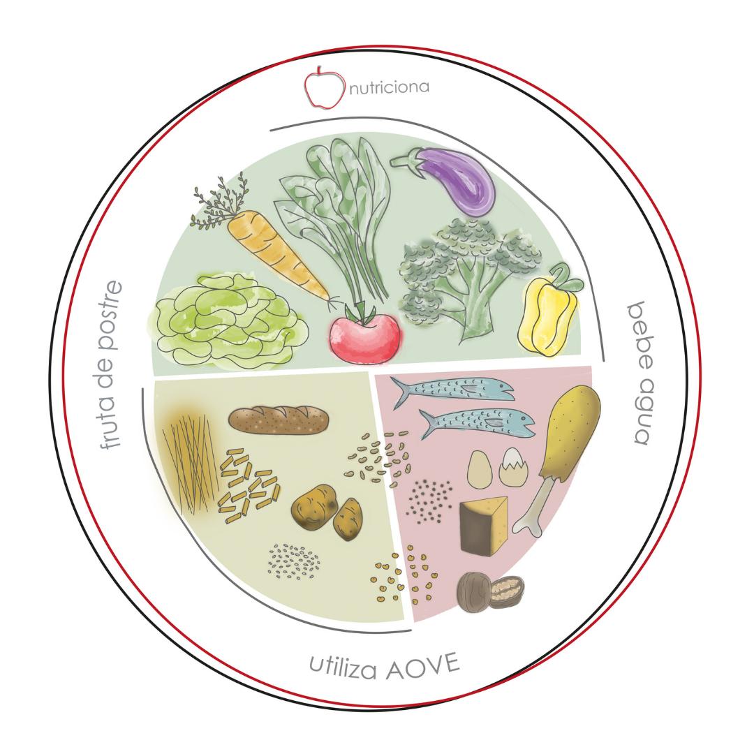 Ilustración de un plato dividido por grupos de alimentos, la parte de arriba verduras (lechuga, zanahoria, espinacas, tomate, brócoli, berenjena y pimientoo amarillo) con fondo verde. La parte inferior, dividida a la mitad. En la parte derecha las proteínas (pescado, pollo, queso, nueces, lentejas, habas y garbanzos) con fondo rojo y la parte inferior izquierda hidratos de carbono y tubérculos (una barra de pan, espaguetis, macarrones, arroz, patatas) en color marrón. En los bordes del plato se puede ver el logo de Nutriciona, la frase bebe agua, utiliza AOVE, fruta de postre.