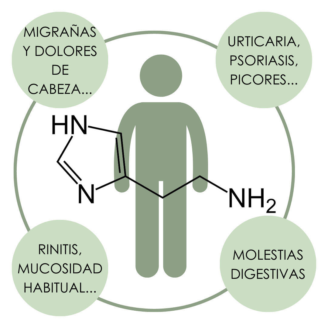"Infografía con un muñeco de fondo y la molécula de la histamina delante. Rodeando al muñeco un círculo verde con cuatro círculos en sus lados (como si formasen un cuadrado) en el círculo superior izquierdo pone en su interior ""migrañas y dolores de cabeza"", en el inferior ""rinitis, mucosidad habitual...."", en la parte derecha, círculo superior ""urticaria, psoriasis, picores,..."" y en el inferior ""molestias digestivas"""